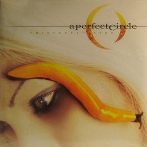A PERFECT CIRCLE the thirteenth step LP