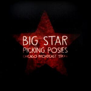 BIG STAR picking posies LP
