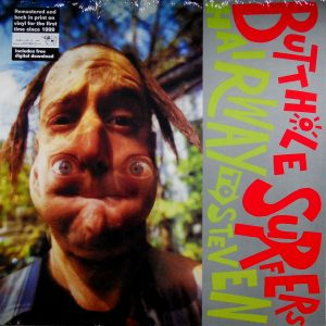 butthole surfers hairway to steven lp front.JPG