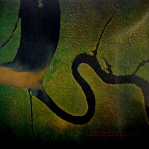 DEAD CAN DANCE the serpent's egg LP