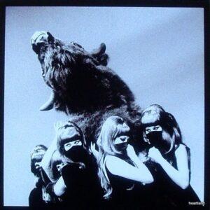dead weather buffalo 7.JPG