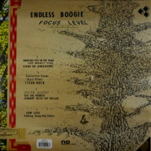 ENDLESS BOOGIE focus level LP