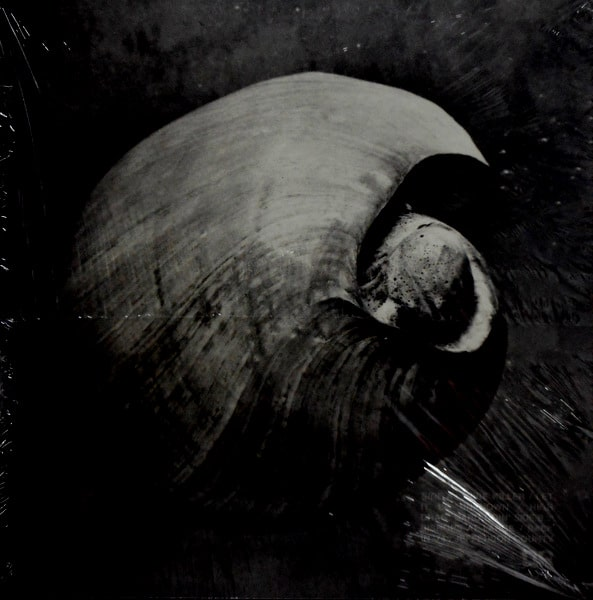 ENDLESS BOOGIE vibe killer LP