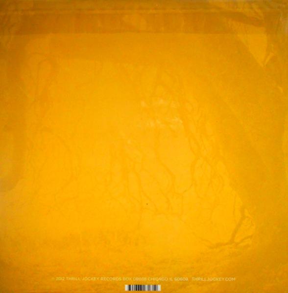 GOLDEN VOID golden void LP back