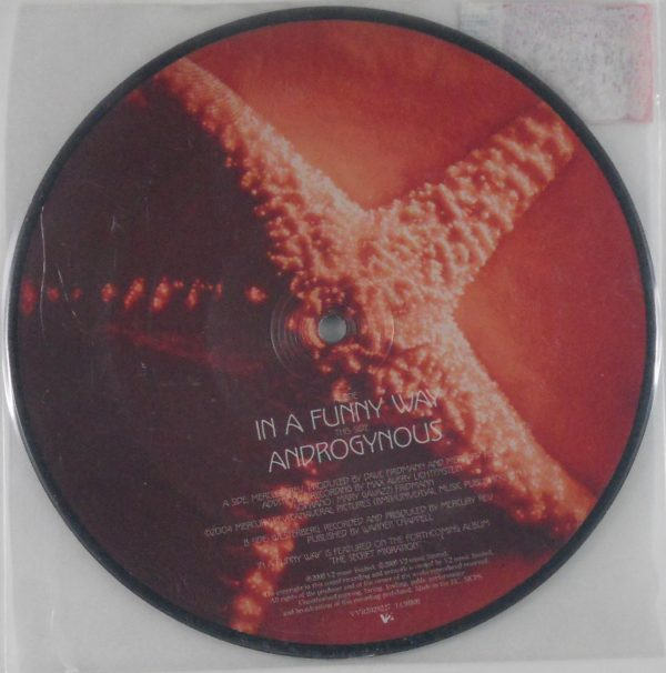 mercury rev in a funny way 7 inch pic disc