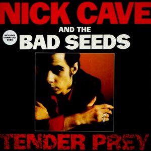 CAVE, NICK & THE BAD SEEDS tender prey LP